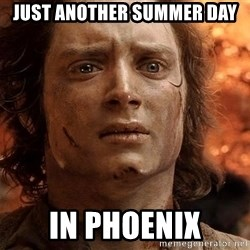 Frodo  - Just another summer day In Phoenix