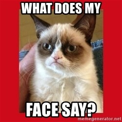 No cat - what does my face say?