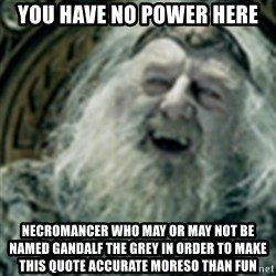 you have no power here - You have no power here necromancer who may or may not be named gandalf the grey in order to make this quote accurate moreso than fun