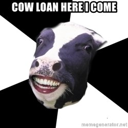 Restaurant Employee Cow - Cow loan here I come