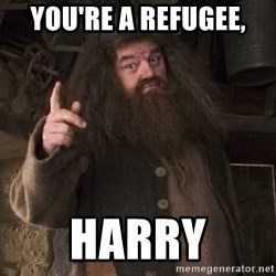 Hagrid - you're a refugee, Harry