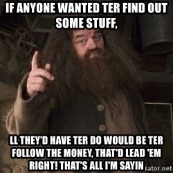 Hagrid - If anyone wanted ter find out some stuff,  ll they'd have ter do would be ter follow the money, That'd lead 'em right! That's all I'm sayin