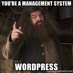 Hagrid - You're a management system WordPress