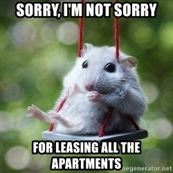 Sorry I'm not Sorry - SORRY, I'M NOT SORRY FOR LEASING ALL THE APARTMENTS
