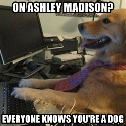I have no idea what I'm doing - Dog with Tie - On Ashley Madison? Everyone knows you're a dog