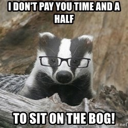 Nerdy Badger - i don't pay you time and a half to sit on the bog!