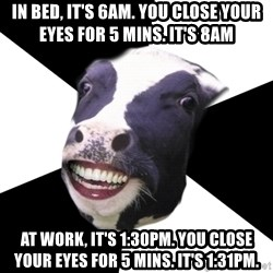 Restaurant Employee Cow - In bed, it's 6am. You close your eyes for 5 mins. It's 8am At work, it's 1:30pm. You close your eyes for 5 mins. It's 1:31pm.