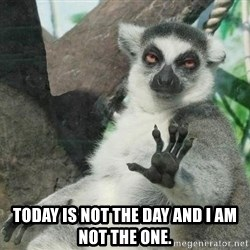Not Today Lemur -  TODAY IS NOT THE DAY AND I AM NOT THE ONE.