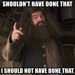 Hagrid - shouldn't have done that I should not have done that