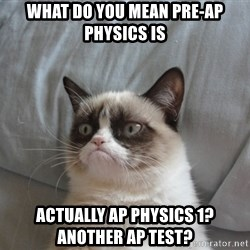 Grumpy cat good - What do you mean Pre-AP Physics is  actually AP physics 1?  Another AP Test?