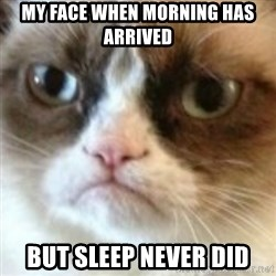 angry cat asshole - my face when morning has arrived but sleep never did
