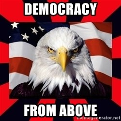 Bald Eagle - democracy from above
