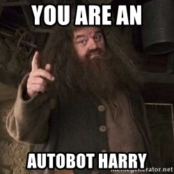 Hagrid - YOU ARE AN  AUTOBOT HARRY