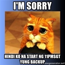 puss in boots eyes 2 - I'm sorry Hindi ko na start ng 11PMSGT yung backup