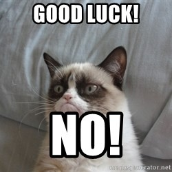 Grumpy cat good - Good luck! NO!
