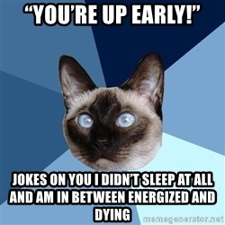"Chronic Illness Cat - ""you're up early!"" jokes on you i didn't sleep at all and am in between energized and dying"