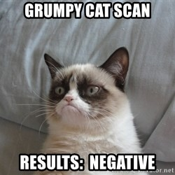 Grumpy cat good - grumpy cat scan Results:  negative