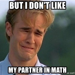 Crying Man - but i don't like my partner in math