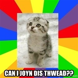 Cute Kitten -  CAN I JOYN DIS THWEAD??