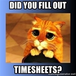 puss in boots eyes 2 - Did you fill out Timesheets?