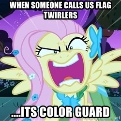 angry-fluttershy - When someone calls us flag twirlers ....ITS COLOR GUARD