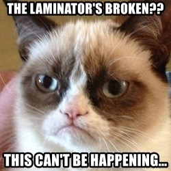 Angry Cat Meme - The laminator's broken?? This can't be happening...
