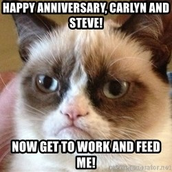 Angry Cat Meme - Happy Anniversary, Carlyn and Steve! Now get to work and feed me!