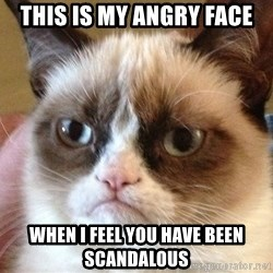 Angry Cat Meme - THIS IS MY ANGRY FACE WHEN I FEEL YOU HAVE BEEN SCANDALOUS