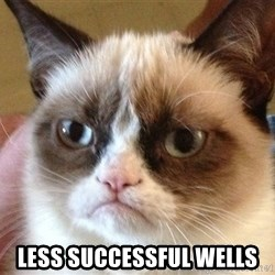 Angry Cat Meme -  Less Successful Wells