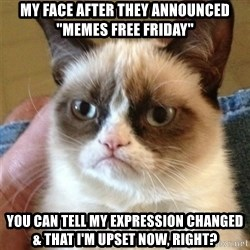 """Grumpy Cat  - my face after they announced """"memes free friday"""" you can tell my expression changed & that i'm upset now, right?"""