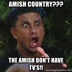Angry Guido  - Amish Country??? The Amish don't have tv's!!