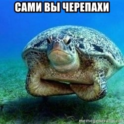 disappointed turtle - Сами вы черепахи
