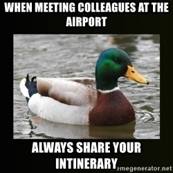 good advice duck - When meeting colleagues at the airport Always share your intinerary
