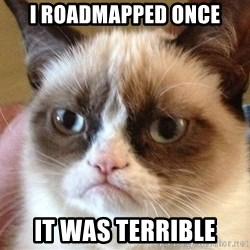 Angry Cat Meme - I Roadmapped Once It was terrible
