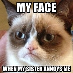 Angry Cat Meme - My Face When my sister annoys me