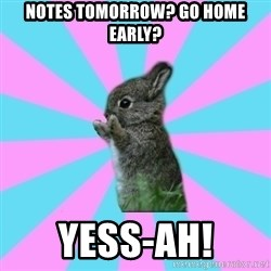 yAy FoR LifE BunNy - Notes Tomorrow? Go home early? YESS-AH!