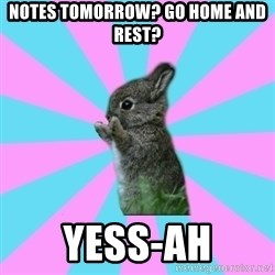 yAy FoR LifE BunNy - Notes tomorrow? Go home and rest? YESS-AH