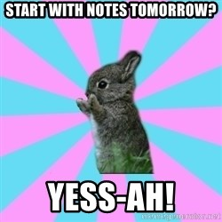 yAy FoR LifE BunNy - Start with notes tomorrow? YESS-AH!