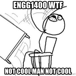 Flip table meme - engg1400 wtf not cool man not cool