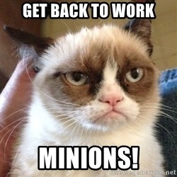 Grumpy Cat 2 - Get back to work Minions!