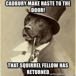 Old Money Dog - Cadbury make haste to the door! That squirrel fellow has returned