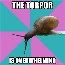 Synesthete Snail - the torpor is overwhelming