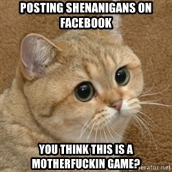 motherfucking game cat - posting shenanigans on facebook you think this is a motherfuckin game?