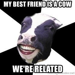 Restaurant Employee Cow - my best friend is a cow we're related