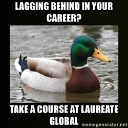 good advice duck - LAGGING BEHIND IN YOUR CAREER? TAKE A COURSE AT LAUREATE GLOBAL
