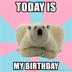 Perfection Polar Bear - today is My Birthday
