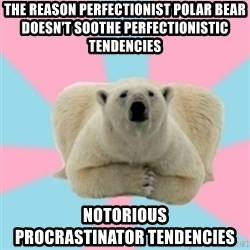 Perfection Polar Bear - the reason perfectionist polar bear doesn't soothe perfectionistic tendencies notorious               procrastinator tendencies