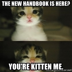 Adorable Kitten - The New Handbook is here? You're kitten me.