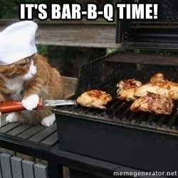 BBQ CAT - It's Bar-B-Q Time!