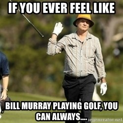 Fuck It Bill Murray - If you ever feel like  Bill Murray playing golf, you can always....